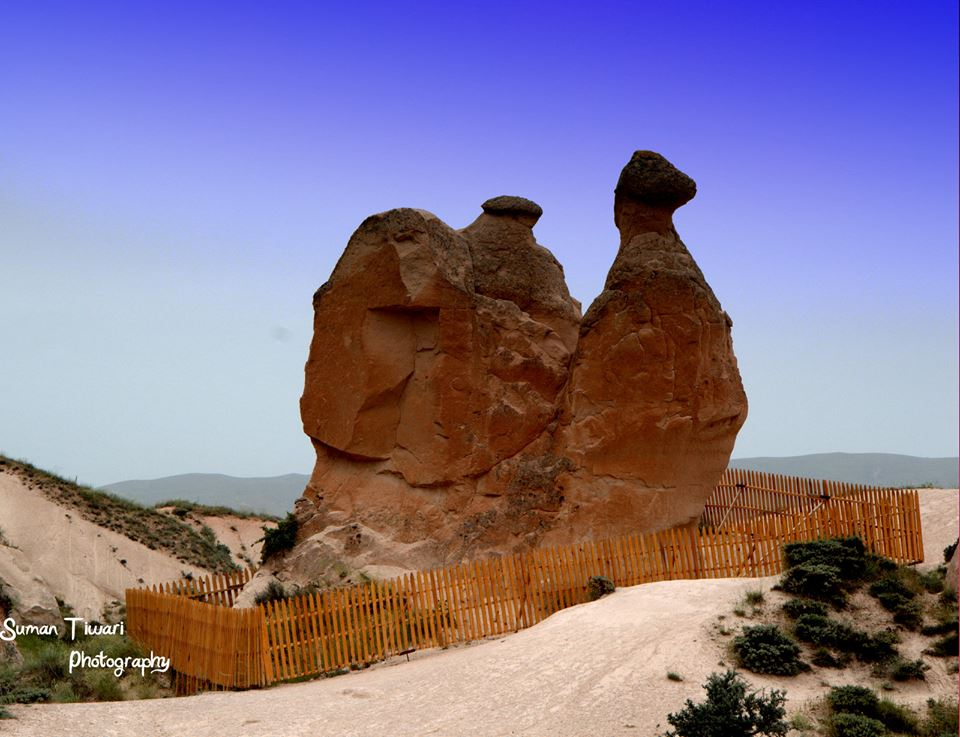 Cappadocia_Suman Tiwari Photography_Camel Rock