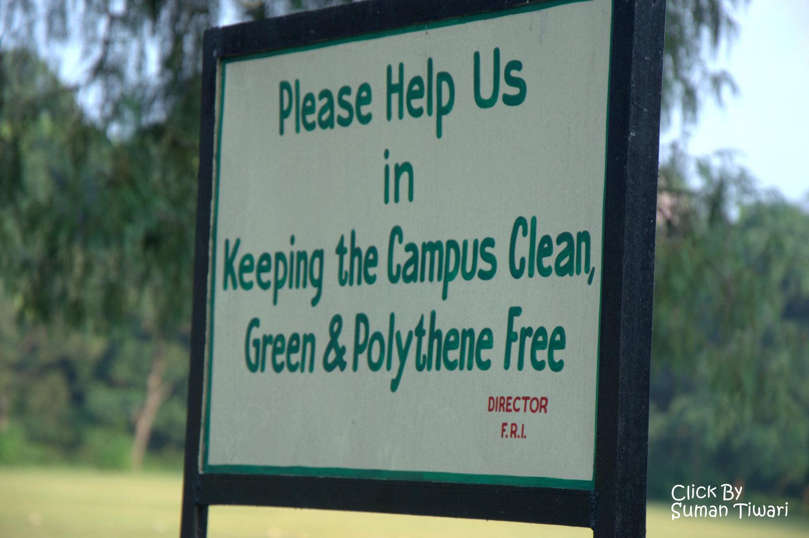 Clean Doon Green Doon